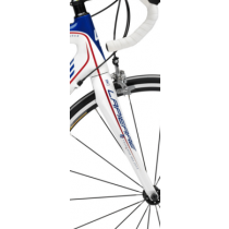 RITCHEY Fork WCS CARBON 700C FDJ Tapered (20312020)
