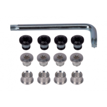 FSA Chainring Bolts Kit for CK-700A Silver w/T-30 Torx Wrench (390-1010)