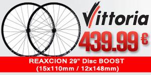 VITTORIA-1W2A132BB0016AM-CLT