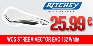 RITCHEY-40050826025-ACLHG